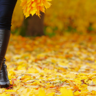 Fall Boots: What Your Boot Pick Says About Your Personality