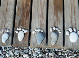 Stones in the Shape of Feet and Toes