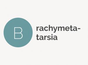 Brachymetatarsia Definition