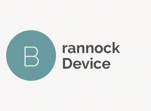 Brannock Device Definition