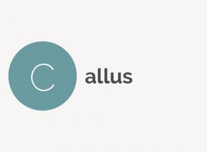 Callus Definition