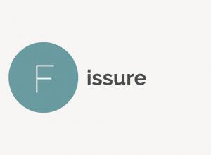Heel Fissure Definition