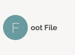 Foot File
