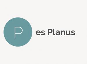 Pes Planus Definition