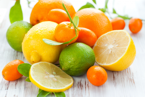 Image result for smell of citrus fruits